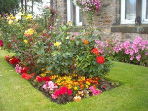 Bellingham_Town_Hall_Gardens_5